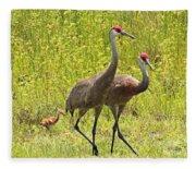 Sandhill Crane Family Fleece Blanket