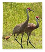 Sandhill Crane Family Fleece Blanket