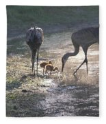 Sandhill Crane Family In Morning Sunshine Fleece Blanket
