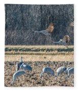 Sandhill Crane Series #3 Fleece Blanket