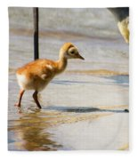 Sandhill Crane With Chick Fleece Blanket