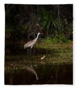 Sandhill Cranes And Chicks Fleece Blanket