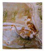 Sandhill Cranes Chicks First Bath Fleece Blanket