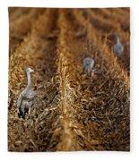 Sandhill Cranes - Cornfield Fleece Blanket