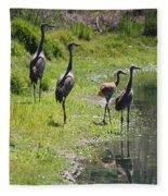 Sandhill Family By The Pond Fleece Blanket
