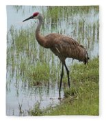 Sandhill In The Marsh Fleece Blanket