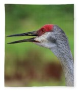 Sandhill Song Fleece Blanket