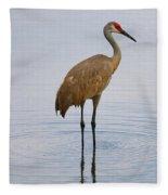 Sandhill Standing In Peaceful Pond Fleece Blanket