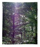 Saplings In The Sun Fleece Blanket