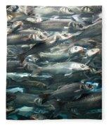 Sardines 1 Fleece Blanket