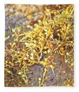Sargassum Seaweed Fleece Blanket
