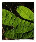 Sassafras Fleece Blanket