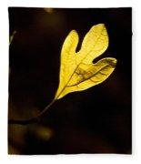 Sassafras Leaf Aglow Fleece Blanket