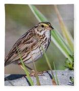 Savanah Sparrow Fleece Blanket
