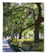 Savannah Benches Fleece Blanket
