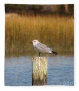 Savannah Shore Bird Fleece Blanket