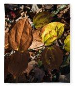 Sawbrier Or Greenbriar In The Fall Fleece Blanket