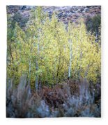 Sawtooth National Forest 2 Fleece Blanket