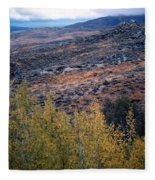 Sawtooth National Forest 1 Fleece Blanket