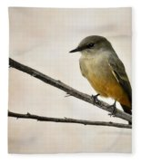 Say's Phoebe  Fleece Blanket