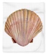 Scallop Shell Fleece Blanket by Amy Kirkpatrick