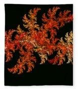 Scallywagg Fleece Blanket