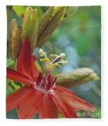 Scarlet Flame Passiflora  Fleece Blanket