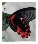 Scarlet Mormon Butterfly #2 Fleece Blanket