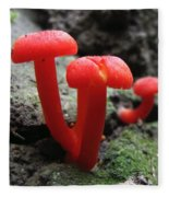 Scarlet Waxcap Fleece Blanket