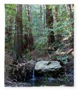 Scents And Subtle Sounds On Mount Tamalpais Fleece Blanket