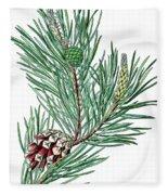 Scots Pine, Pinus Silvestris Fleece Blanket