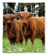 Scottish Highland Cows Fleece Blanket