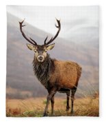 Scottish Red Deer Stag - Glencoe Fleece Blanket