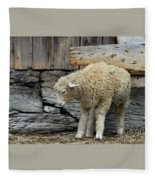 Scratching Board Fleece Blanket