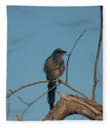 Scrub Jay Private Eye Fleece Blanket
