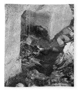 Sculpture Garden IIi In Black And White Fleece Blanket