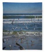 Sea Birds Feeding On Florida Coast Dsc00473_16 Fleece Blanket
