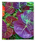 Sea Grape  Fleece Blanket