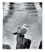 Sea Gull Black And White Fleece Blanket
