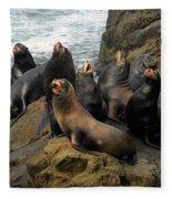 Sea Lion Chorus Fleece Blanket