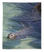 Sea Lion In Clear Blue Waters Fleece Blanket