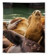 Sea Lion Pup Fleece Blanket