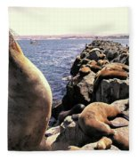 Sea Lions On Rock Pier Fleece Blanket