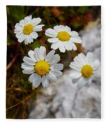 Sea Mayweed Fleece Blanket