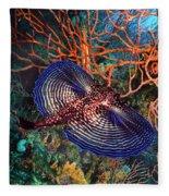 Sea Robin The Flying Gurnard Fleece Blanket