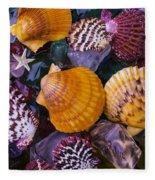 Sea Shells And Sea Glass Fleece Blanket