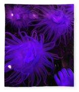 Sea Urchin 8 Fleece Blanket