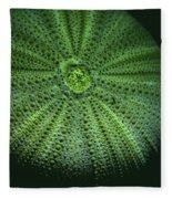 Sea Urchin  Fleece Blanket
