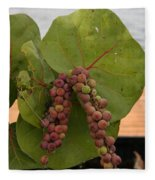 Seagrape Fruits Fleece Blanket