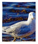 Seagull 1 Fleece Blanket